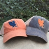 Cap Mesh Eagle Logo War Eagle Snapback