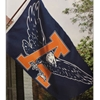 Auburn Eagle Through A Flag